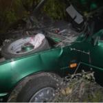 Смертельное ДТП на Николаевщине: авто, вылетев в кювет, врезалось в дерево
