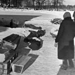 Игорь Пыхалов: Комедия про блокаду Ленинграда – тот случай, когда нужна уголовка за оскорбление чувств