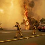 Город Парадайс в Калифорнии уничтожен лесным пожаром
