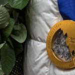 МОК потребовал от 11 россиян вернуть медали за Олимпиаду в Сочи