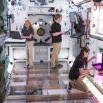 HGTA — прототип обитаемого модуля для космической станции следующего поколения от компании Lockheed Martin