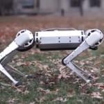 Новый робот-гепард, созданный в Массачусетском технологическом институте, демонстрирует чудеса ловкости