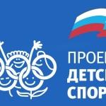 «Единая Россия» предлагает включить малые города в реконструкцию сельских спортзалов