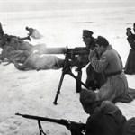 «Большевики перестреляли своих»