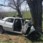 На Одесчине «Волга» влетела в дерево: два человека погибли
