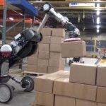 Робот Handle компании Boston Dynamics обрел облик динозавра и готовится к карьере складского рабочего