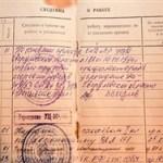 ПФР оцифровал трудовые книжки  россиян и сможет назначать пенсии без участия человека