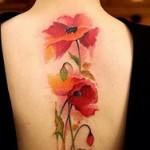 Медики рассказали, кому нельзя делать татуировки