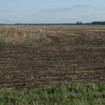 Семья Александра Ткачева собрала земли на $1 млрд