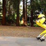 Робот Cassie становится на роликовые коньки