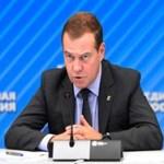 Медведев поручил взять под контроль пожары в Сибири