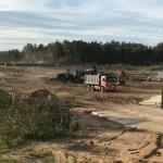 Под Петербургом местные жители борются с Росгвардией, вырубающей леса
