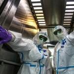 Британия решила остановить на время подсчет умерших от коронавируса